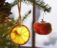 Wegański Potluck Bożonarodzeniowy 2010